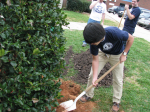 Interact Club 2012 Arbor Day